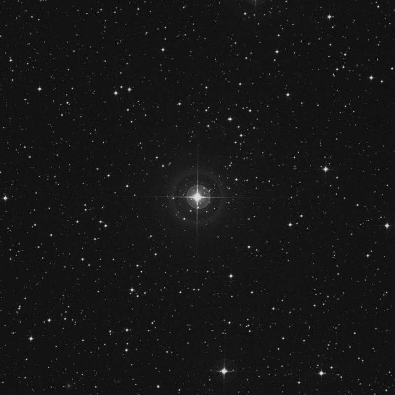 Image of HR2388 star
