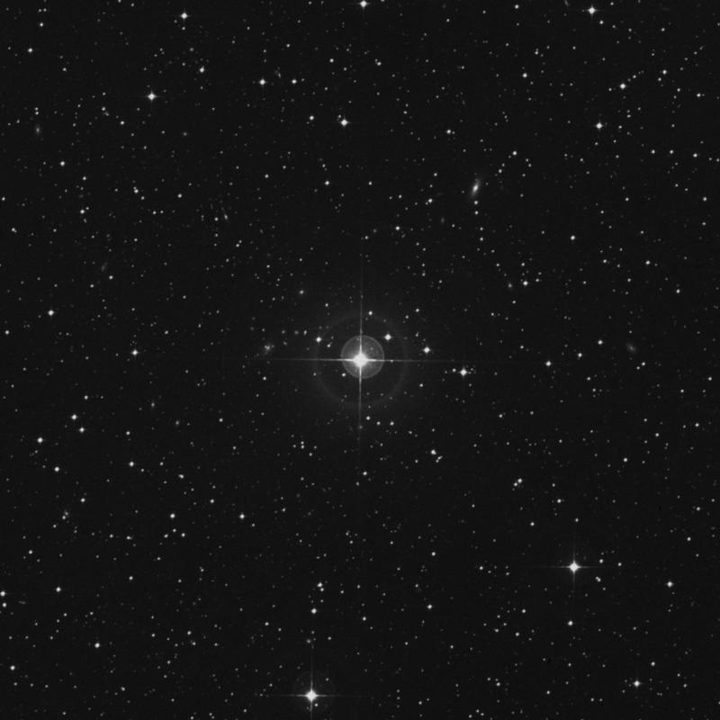 Image of HR2393 star