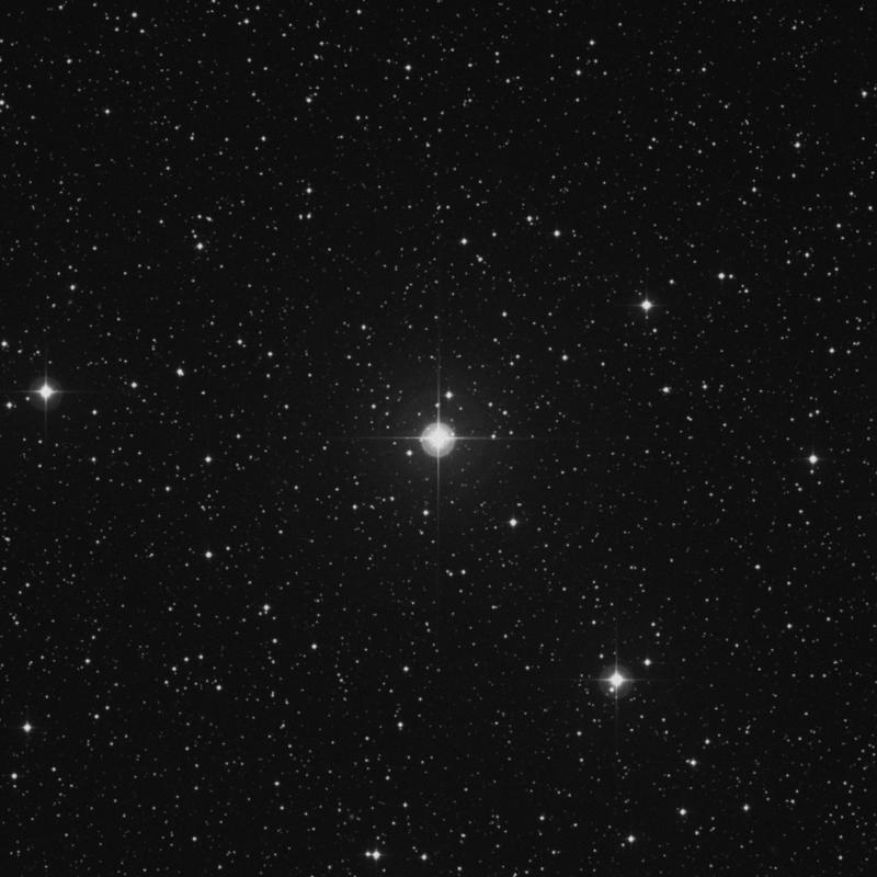 Image of 41 Geminorum star