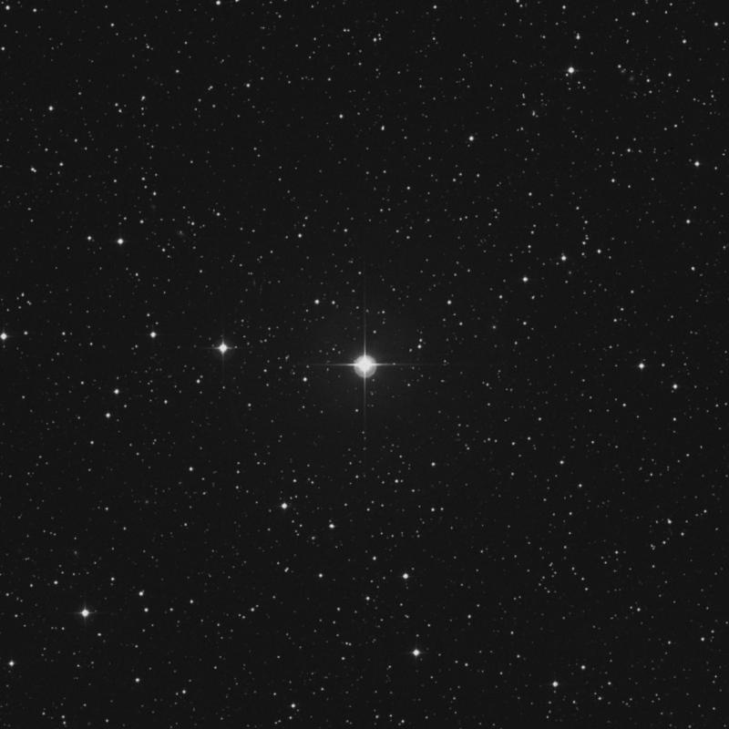 Image of 1 Canis Minoris star