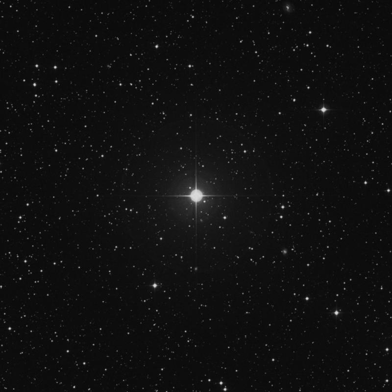 Image of ε Canis Minoris (epsilon Canis Minoris) star