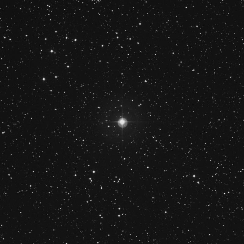 Image of η Canis Minoris (eta Canis Minoris) star