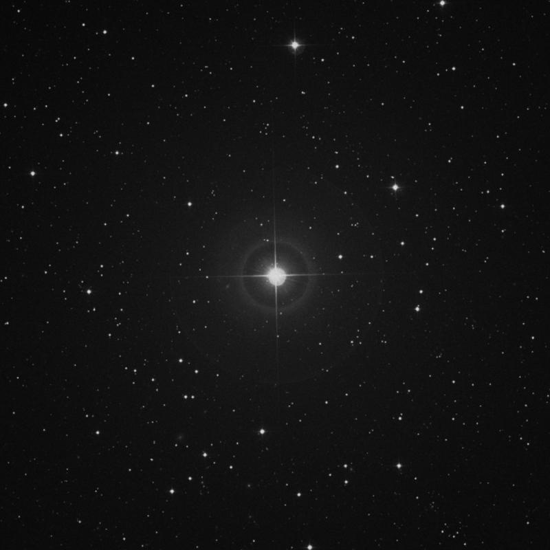Image of ρ Geminorum (rho Geminorum) star