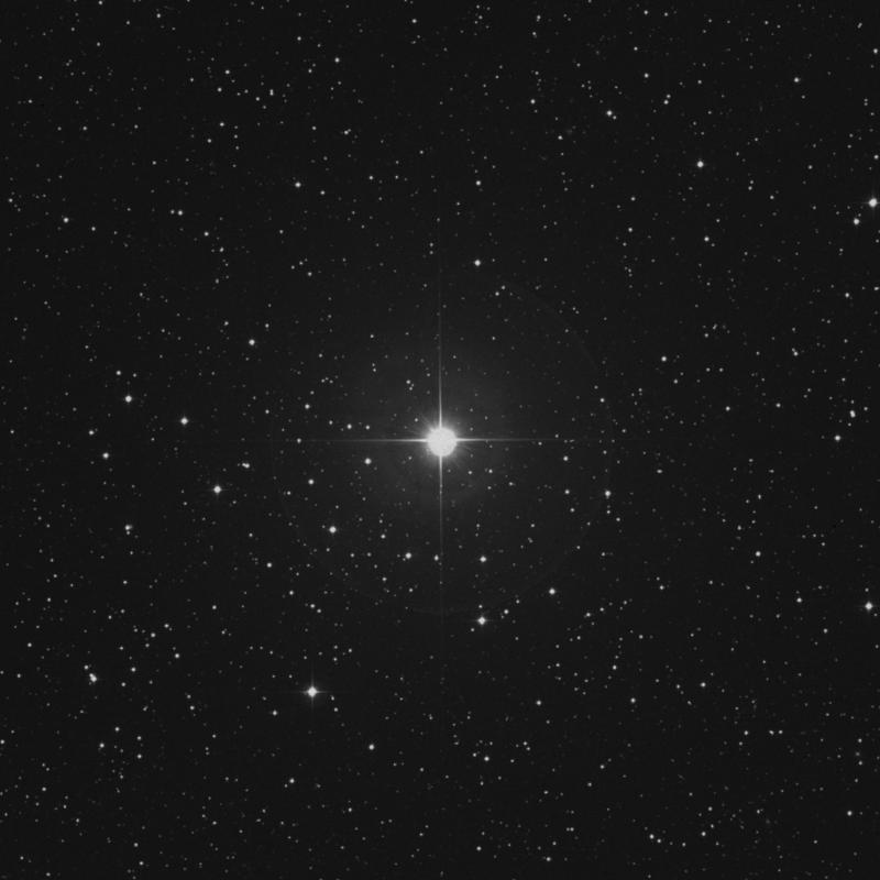 Image of 6 Canis Minoris star
