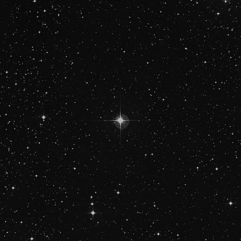 Image of δ1 Canis Minoris (delta1 Canis Minoris) star