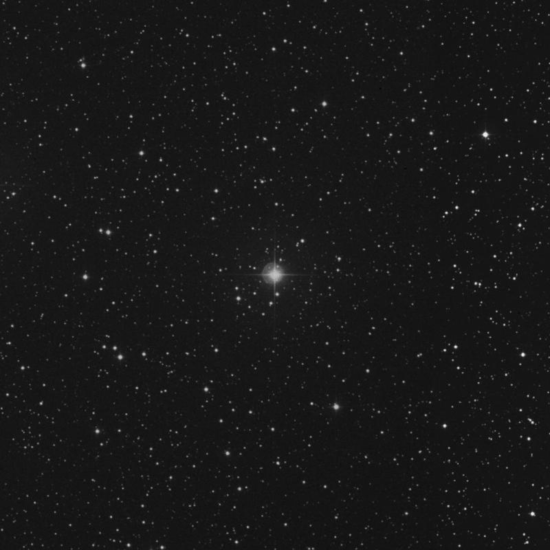 Image of δ2 Canis Minoris (delta2 Canis Minoris) star