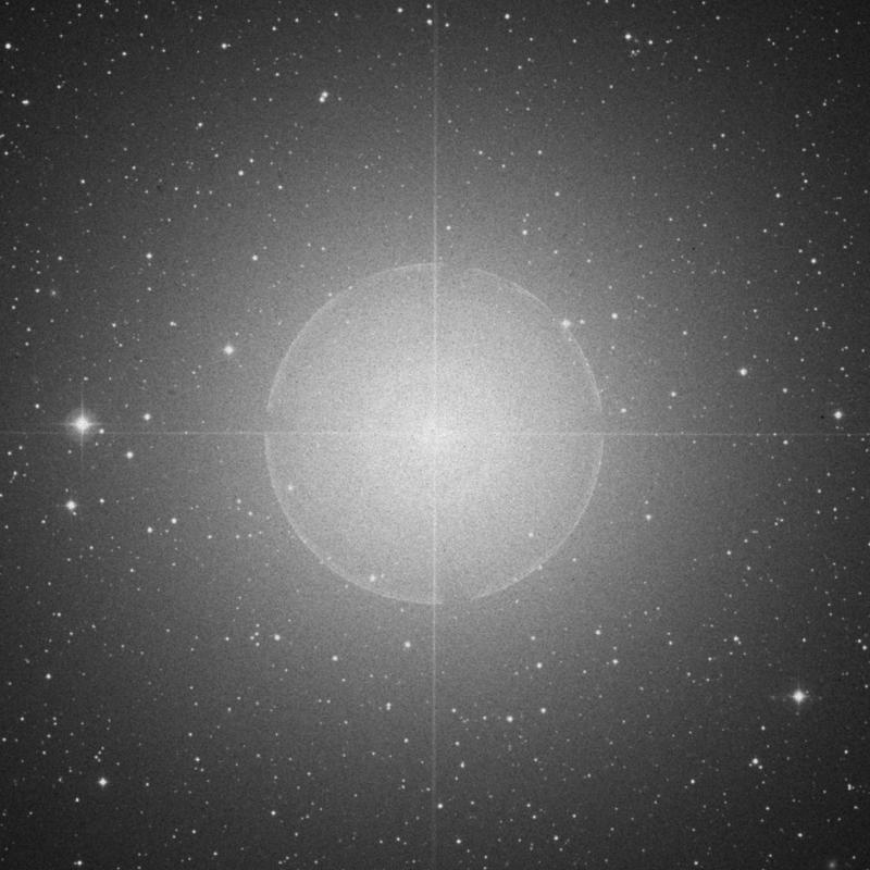 Image of Procyon - α Canis Minoris (alpha Canis Minoris) star