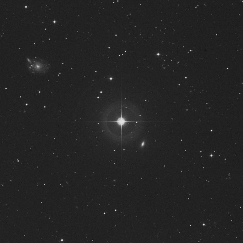 Image of 38 Ceti star