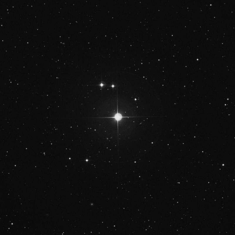 Image of 91 Piscium star