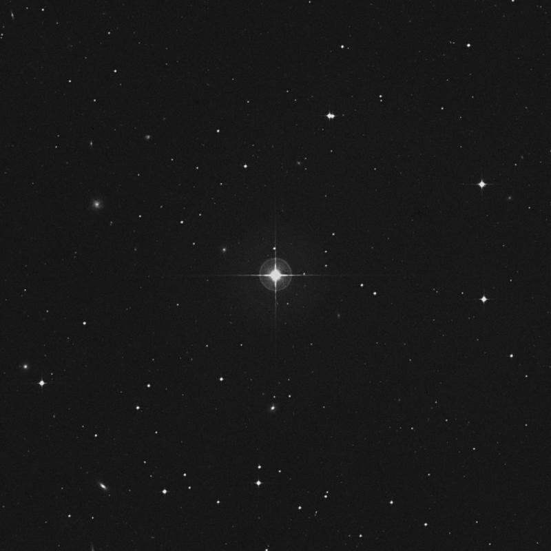 Image of 43 Ceti star