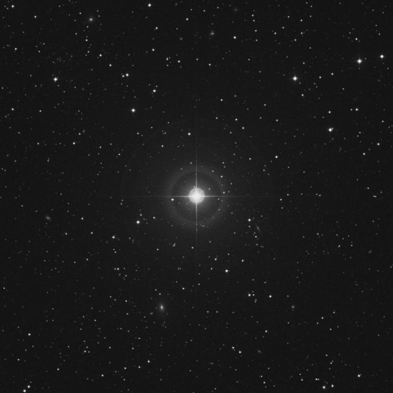 Image of 81 Geminorum star
