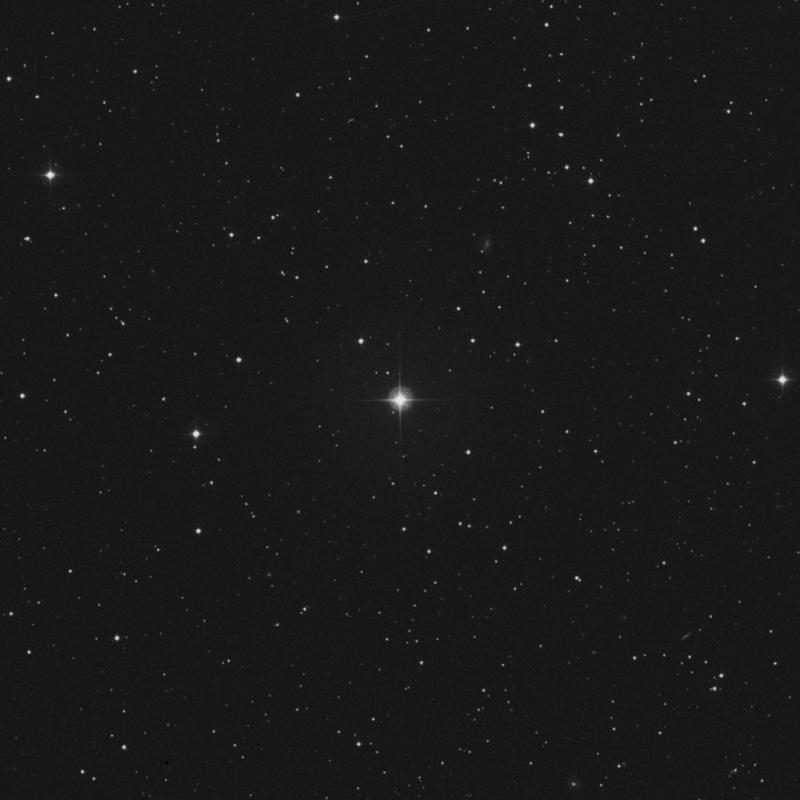 Image of 82 Geminorum star