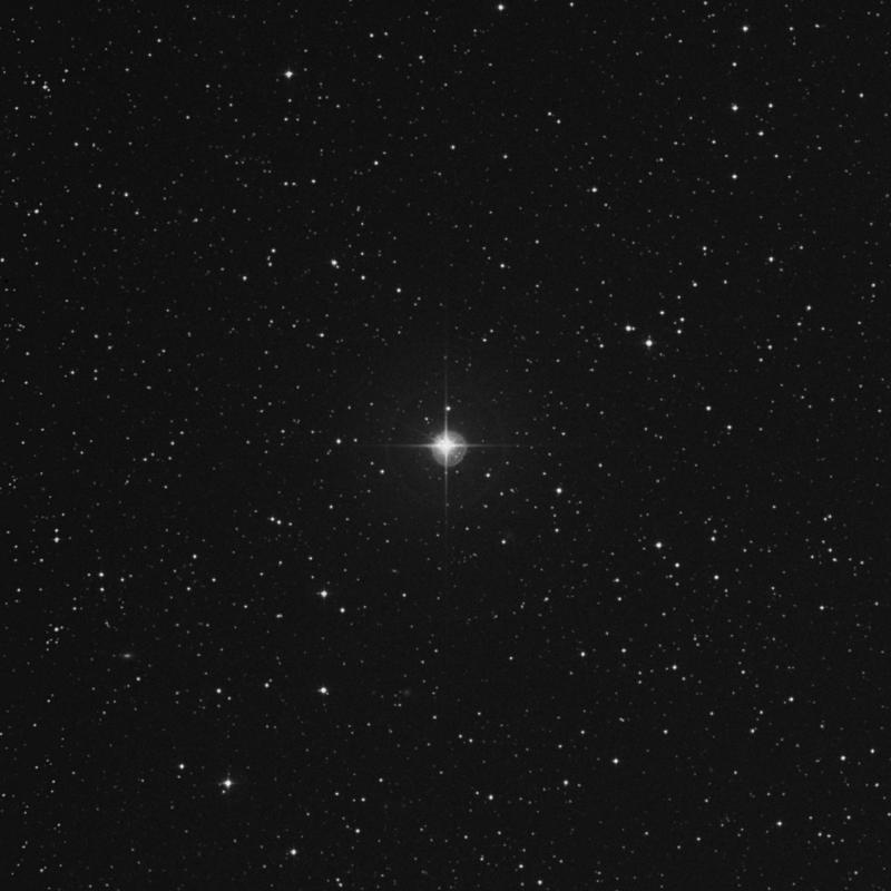 Image of ζ Canis Minoris (zeta Canis Minoris) star