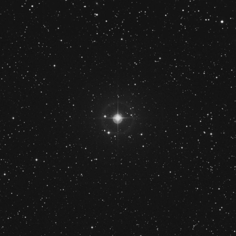 Image of 14 Canis Minoris star