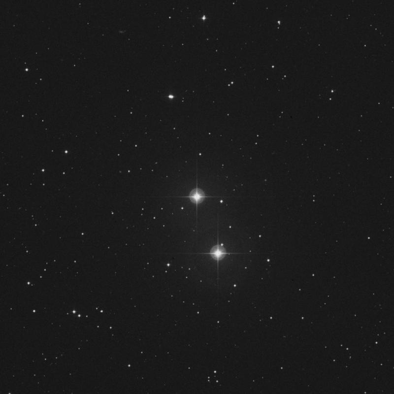 Image of Copernicus - ρ1 Cancri (rho1 Cancri) star