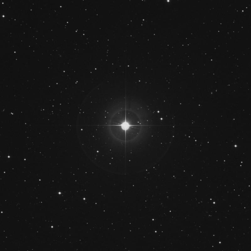 Image of Acubens - α Cancri (alpha Cancri) star
