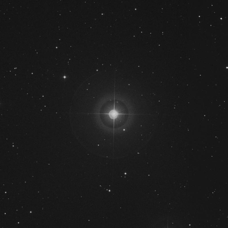 Image of κ Leonis (kappa Leonis) star
