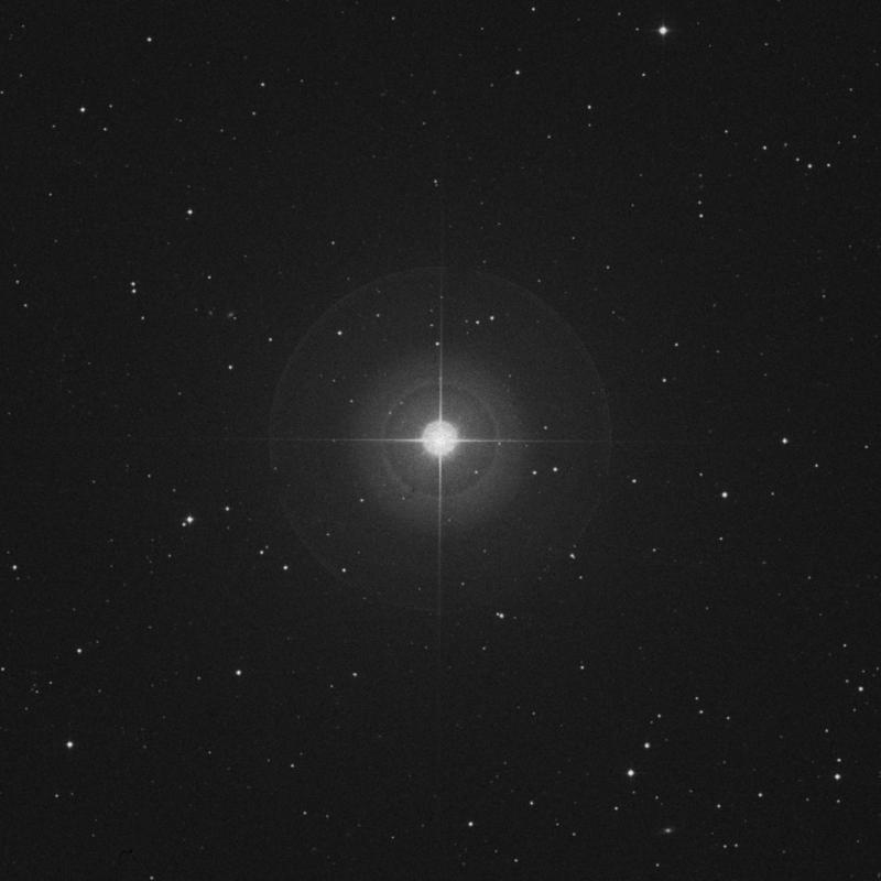 Image of Alterf - λ Leonis (lambda Leonis) star
