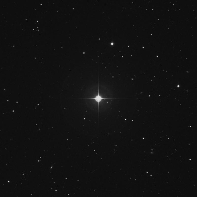 Image of 19 Leonis Minoris star