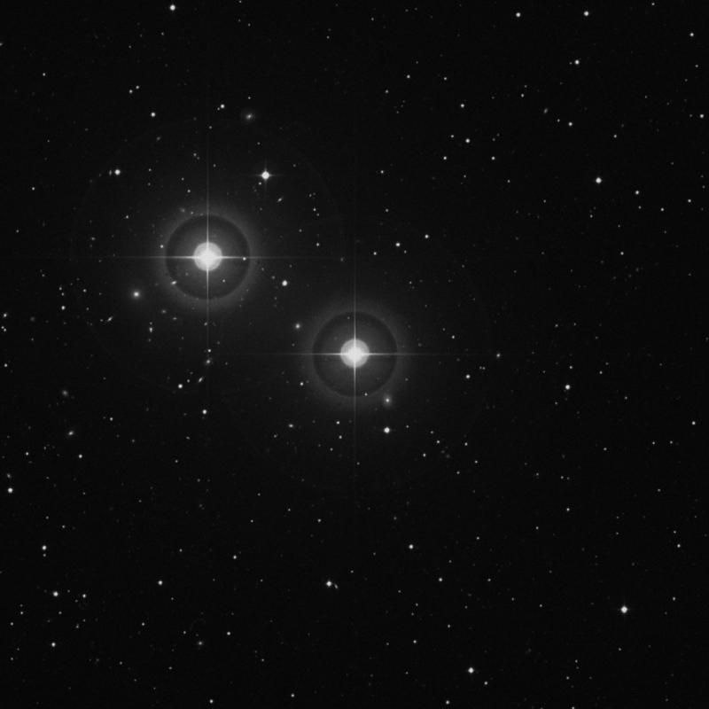 Image of ρ Piscium (rho Piscium) star