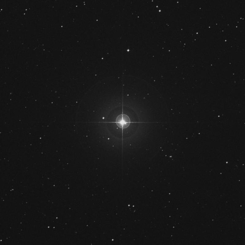 Image of 48 Ceti star