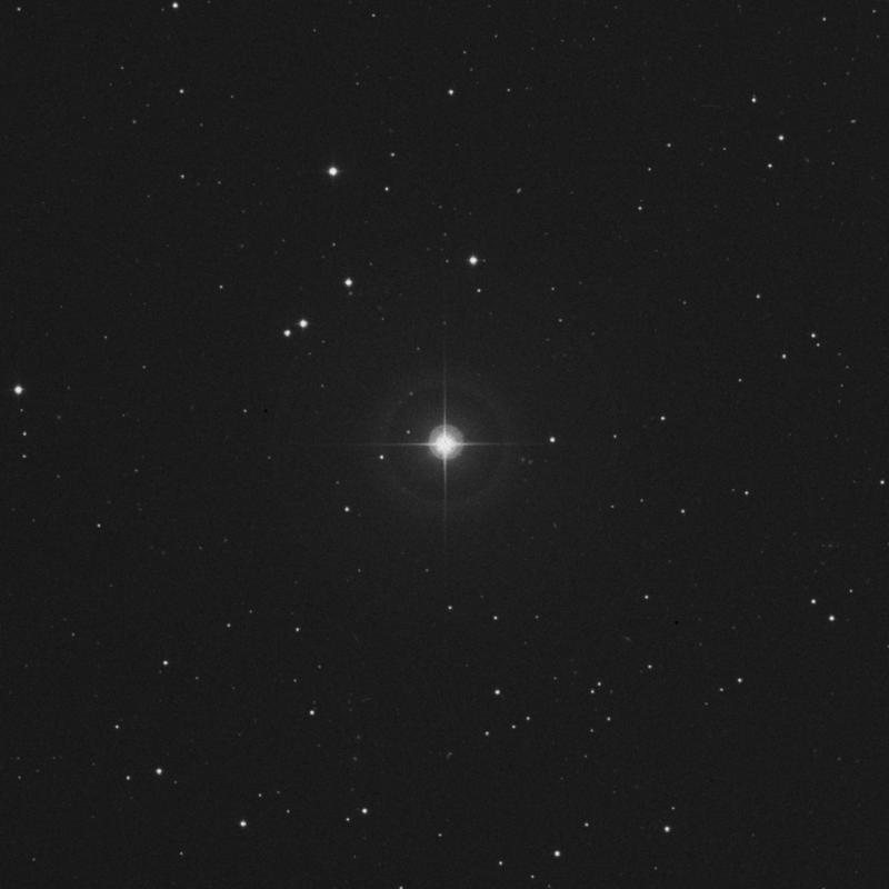 Image of 41 Leonis Minoris star