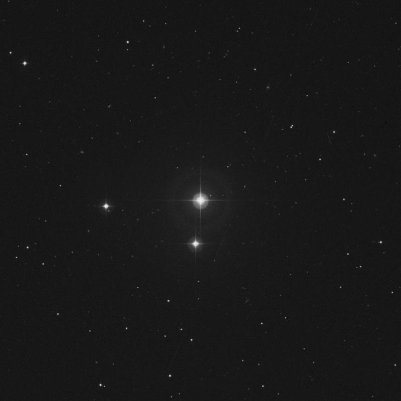 Image of 42 Leonis Minoris star