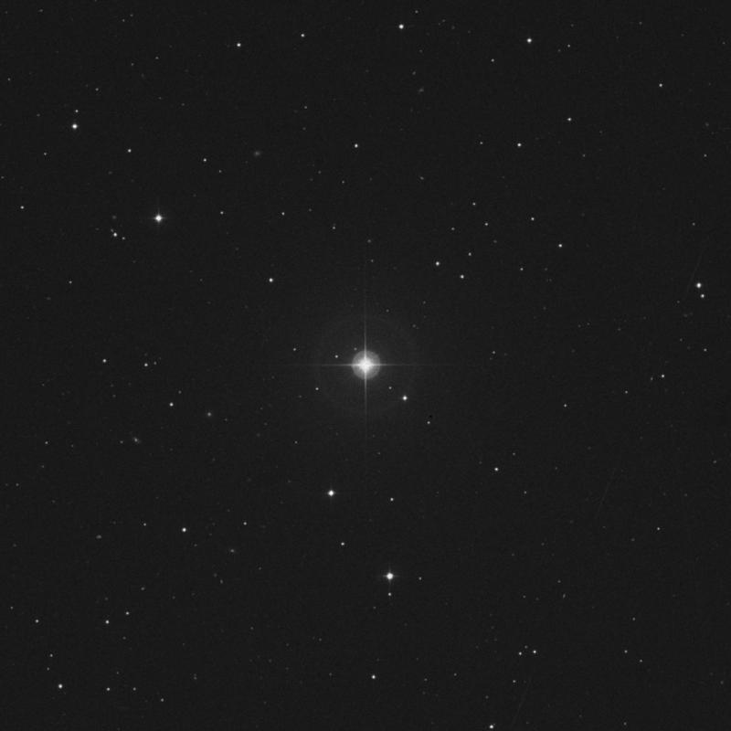 Image of 43 Leonis Minoris star