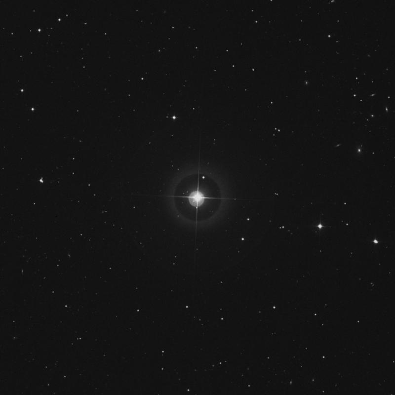 Image of 43 Ursae Majoris star