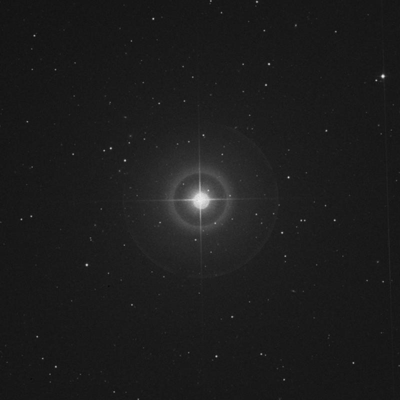 Image of Alula Australis - ξ Ursae Majoris (xi Ursae Majoris) star