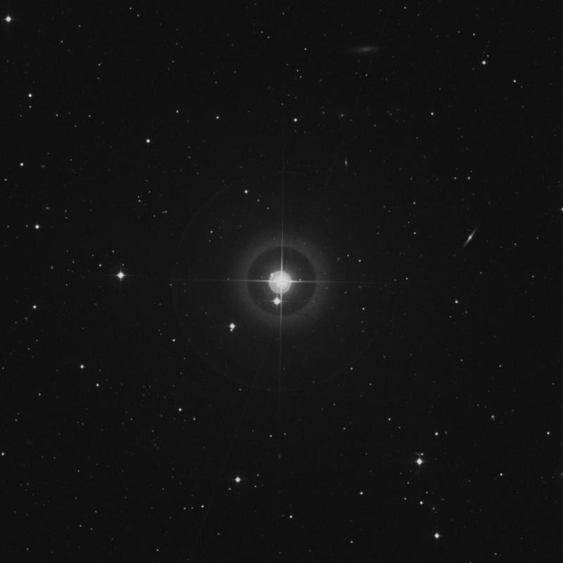 Image of 12 Comae Berenices star