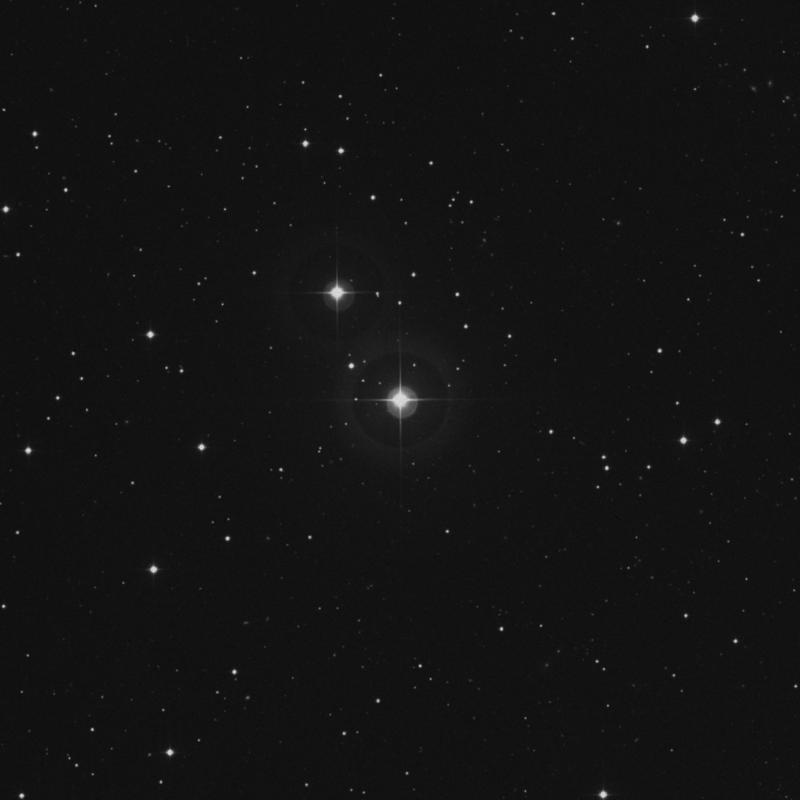 Image of 4 Arietis star