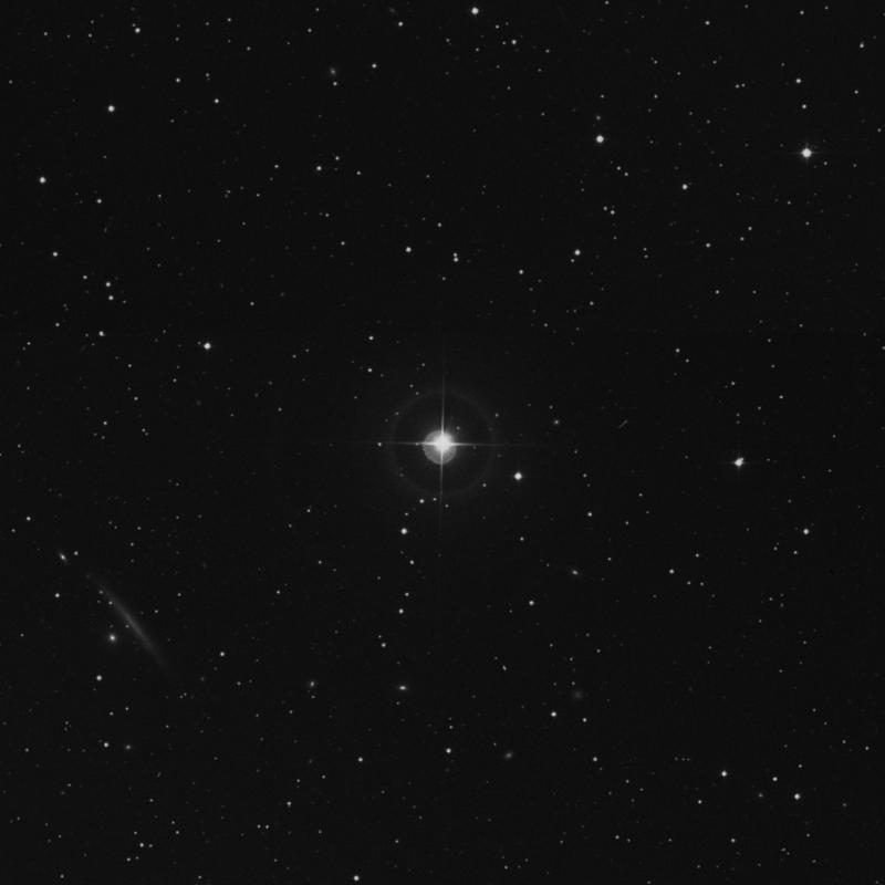 Image of HR523 star