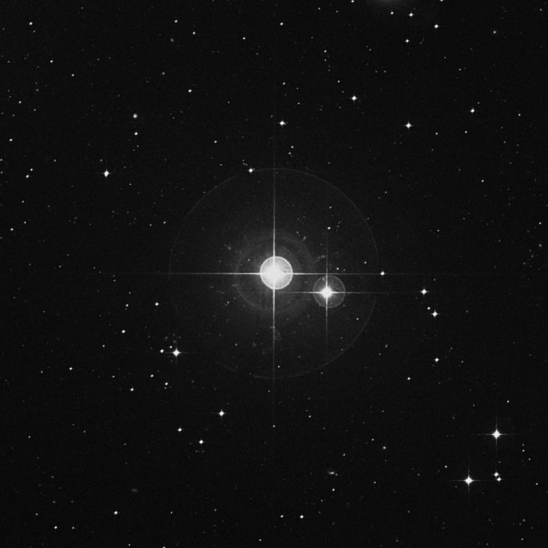 Image of χ Ceti (chi Ceti) star