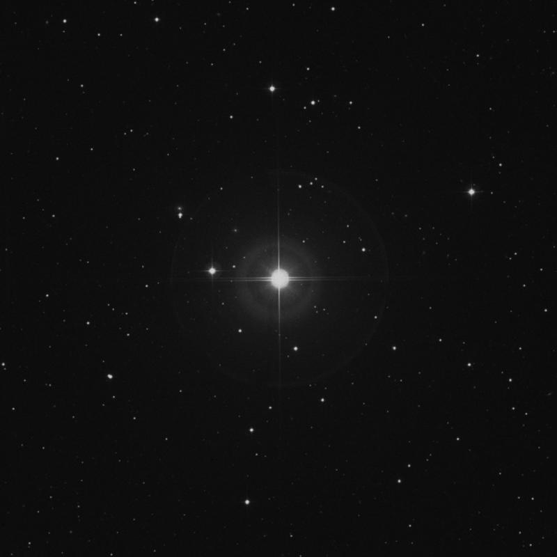 Image of γ1 Arietis (gamma1 Arietis) star