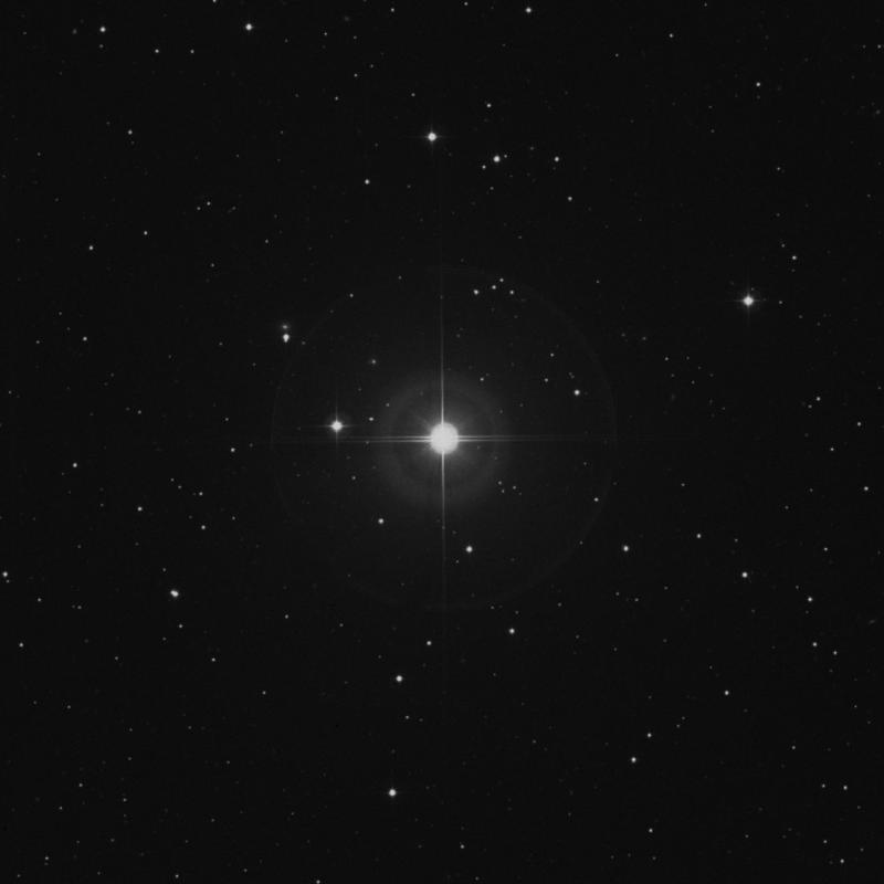 Image of Mesarthim - γ2 Arietis (gamma2 Arietis) star