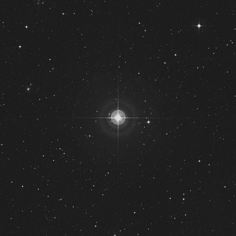 Image of 83 Virginis star