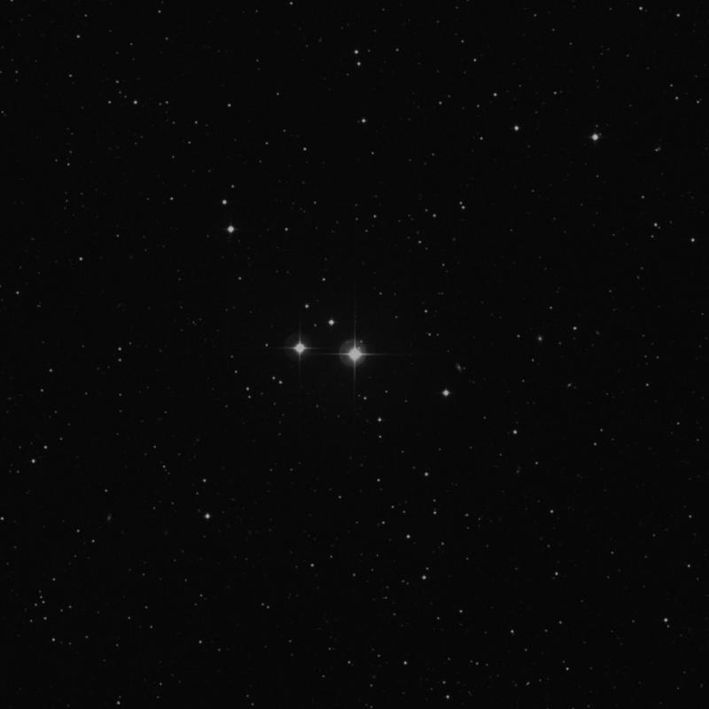 Image of 40 Serpentis star