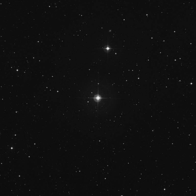 Image of 11 Arietis star