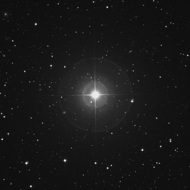 Image of β Trianguli (beta Trianguli) star