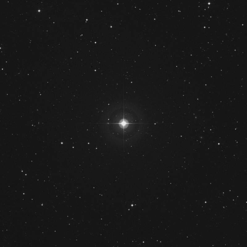 Image of 20 Arietis star