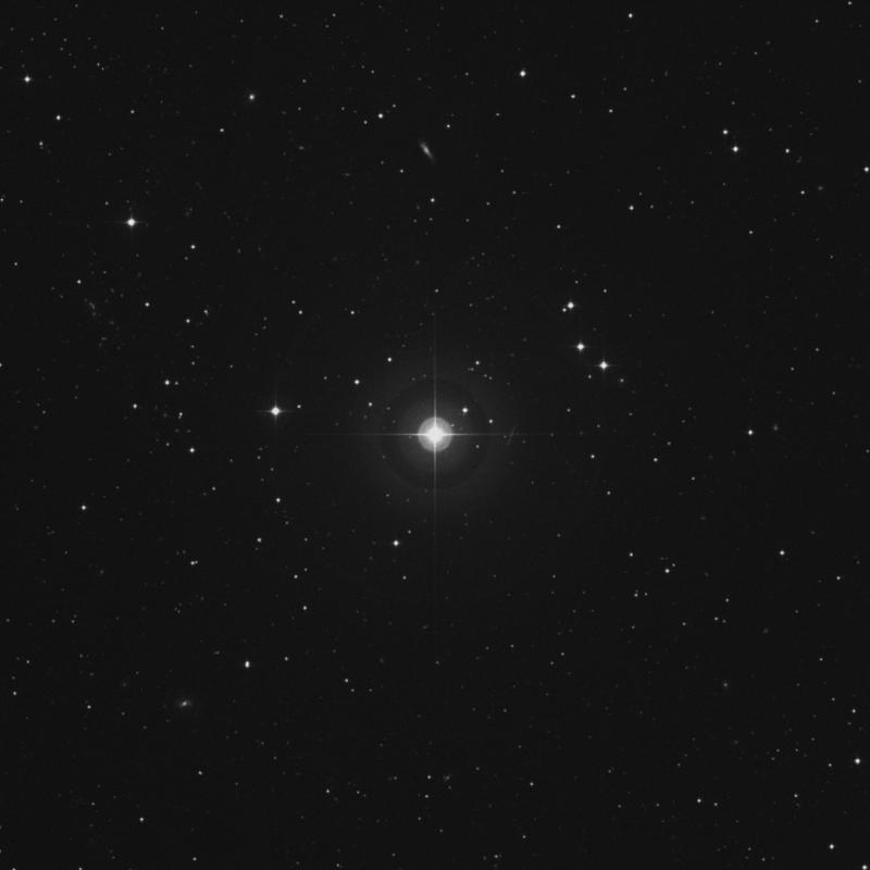 Image of 21 Arietis star