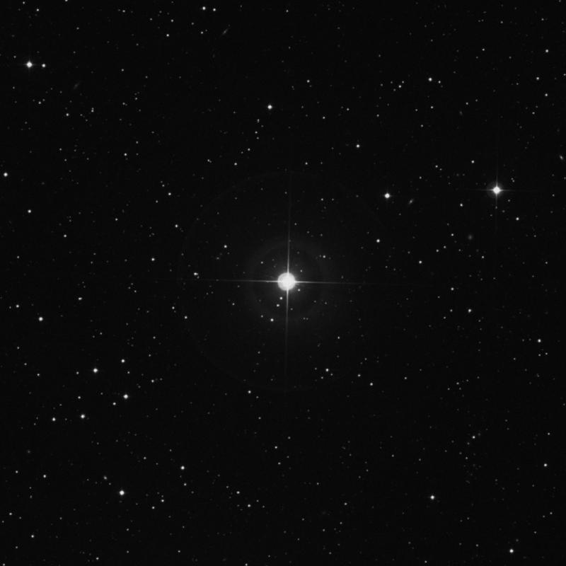 Image of δ Trianguli (delta Trianguli) star