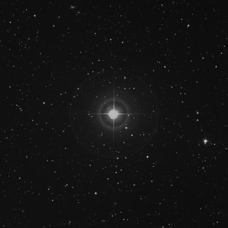 Image of 29 Herculis star