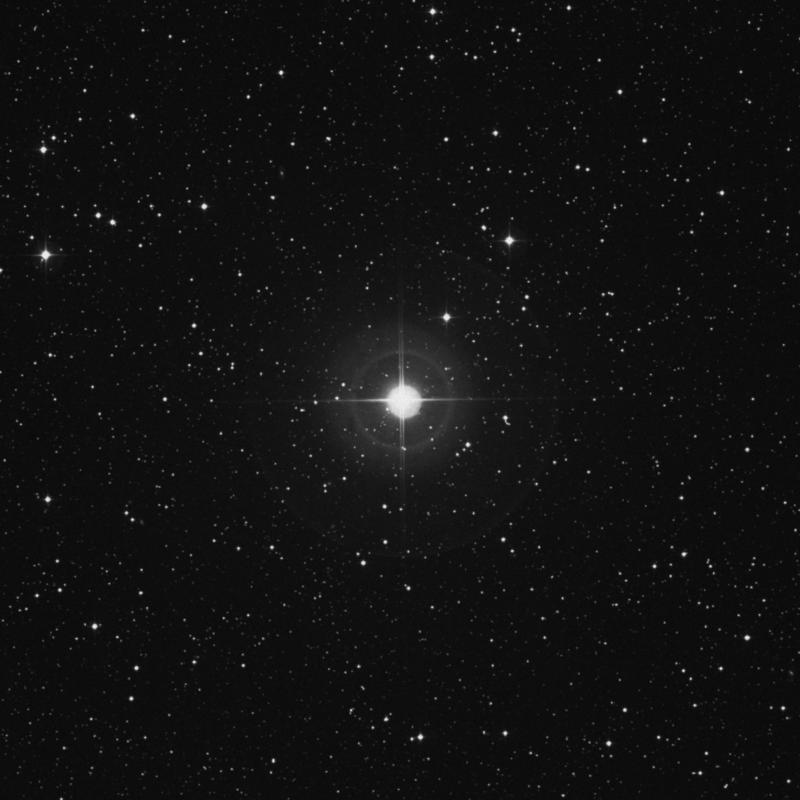 Image of 95 Herculis star