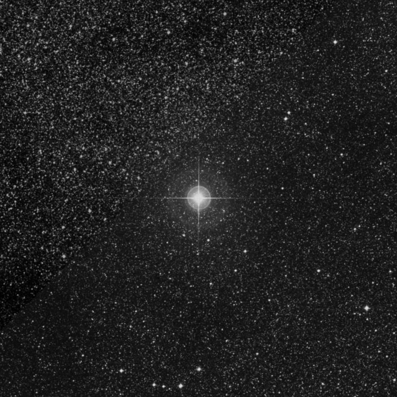 Image of Alnasl - γ2 Sagittarii (gamma2 Sagittarii) star