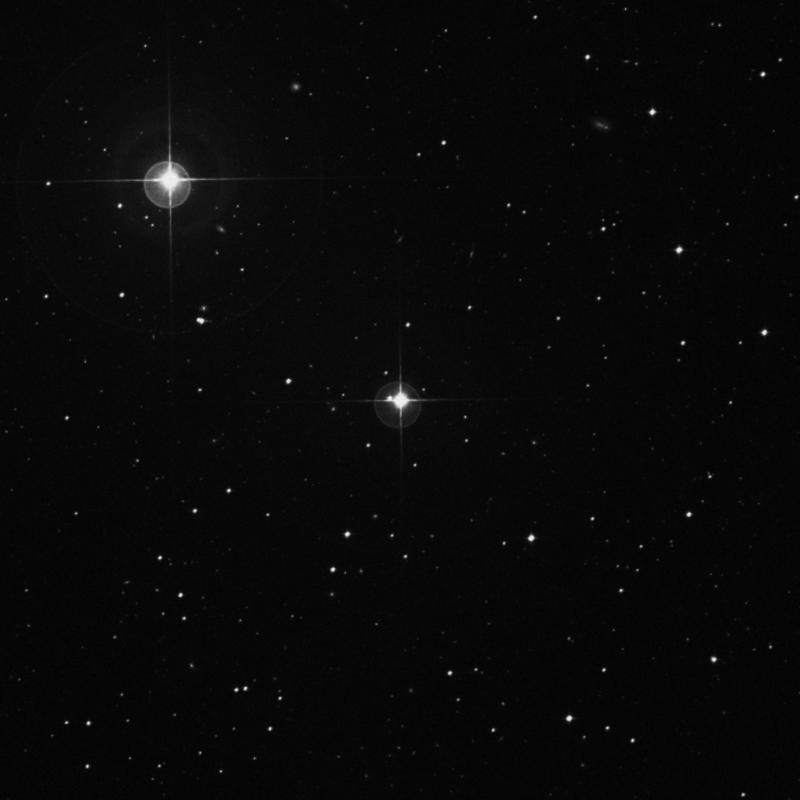 Image of HR730 star
