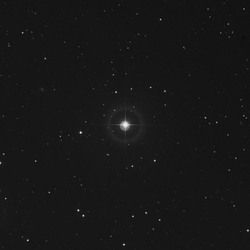 Image of 31 Arietis star