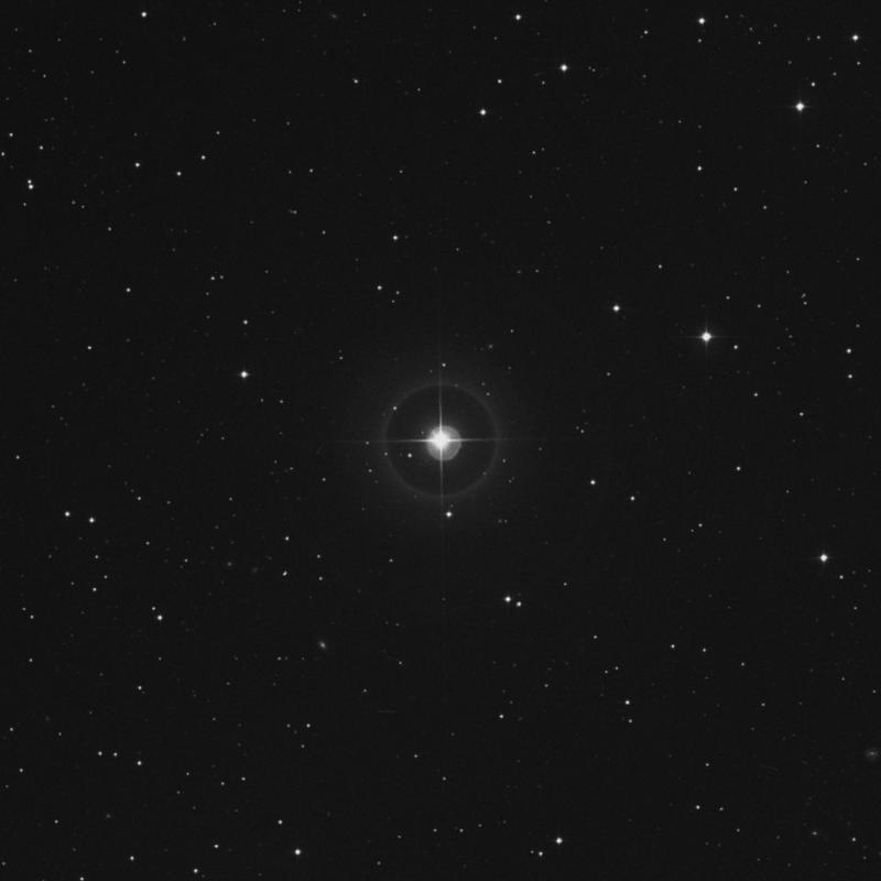 Image of ν Arietis (nu Arietis) star