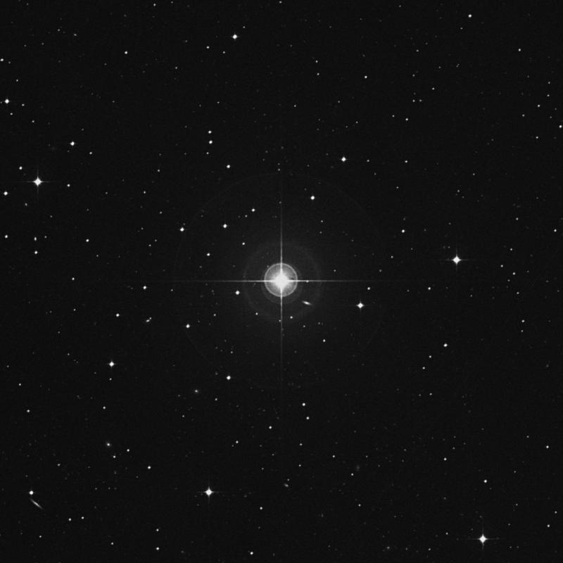 Image of 84 Ceti star